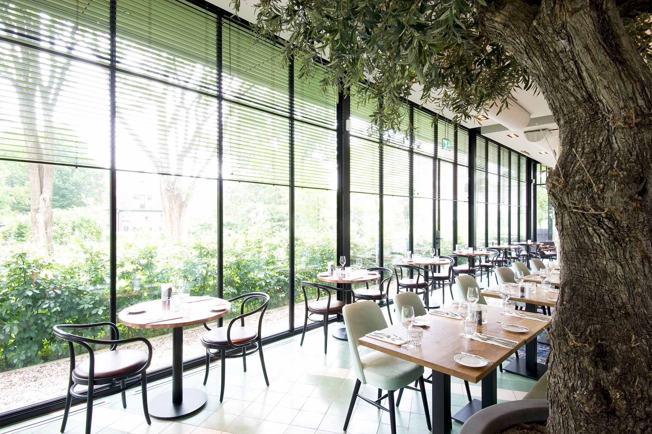 modern restaurant with steel framed glass walls and windows