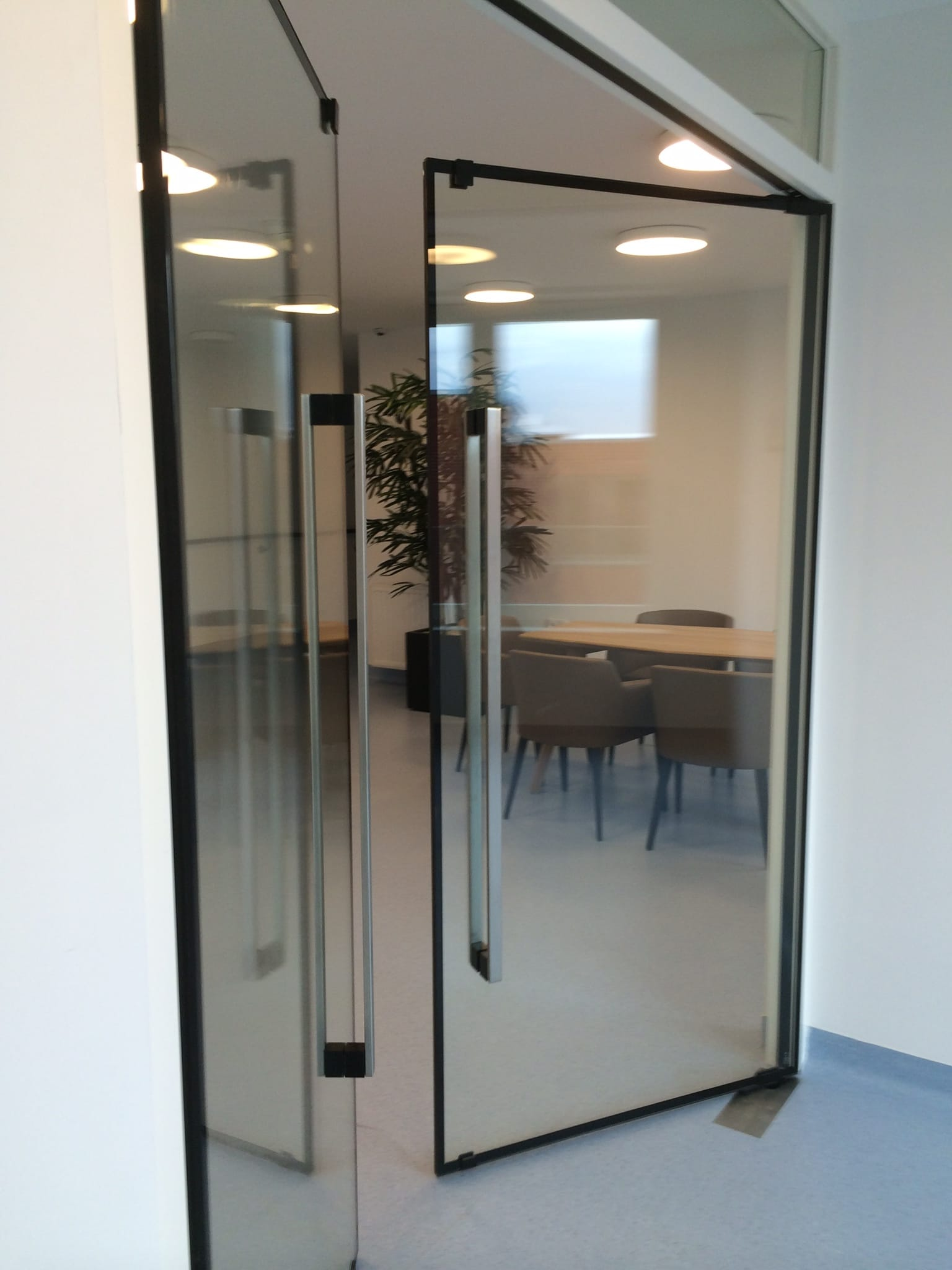 Frameless fire rated commercial doors